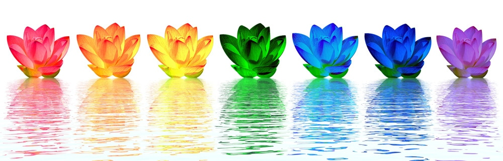 Flowers of the Chakras